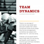 SIOR Report - Team Dynamics_Bergsman - Highlighted_Page_2